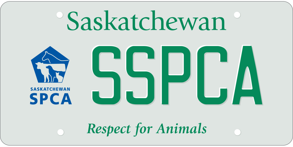 Specialty and personalized plates - SGI